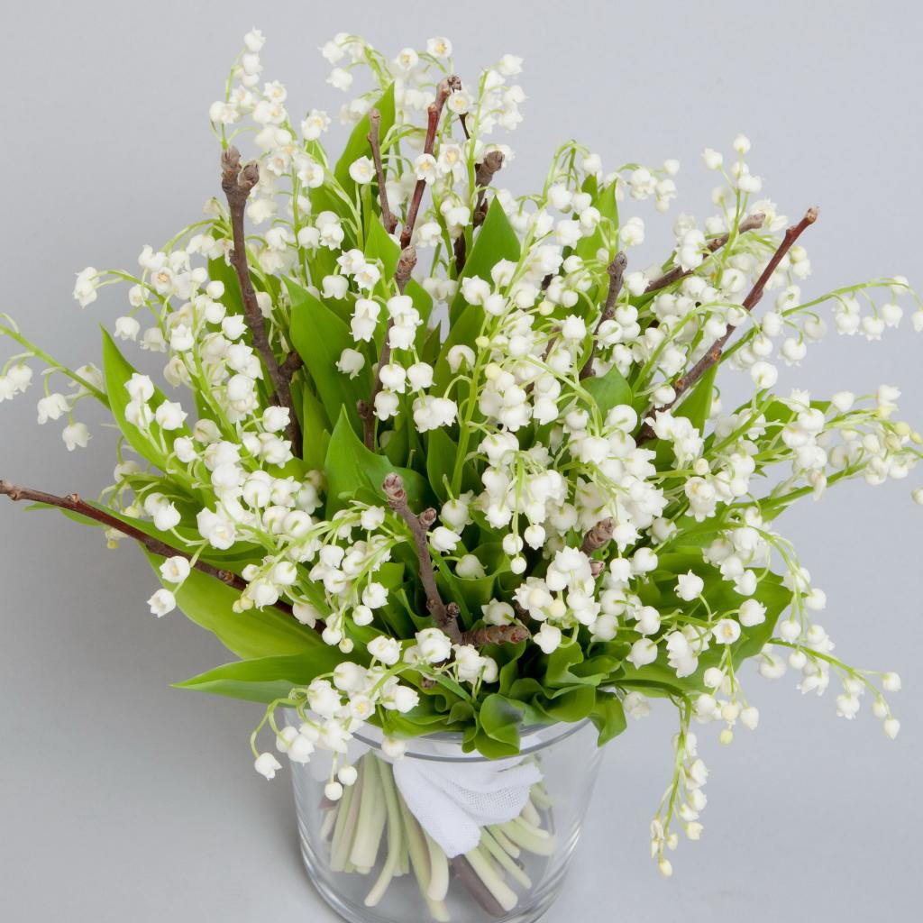 Цветы весны в букетов названия, подоконник для цветов