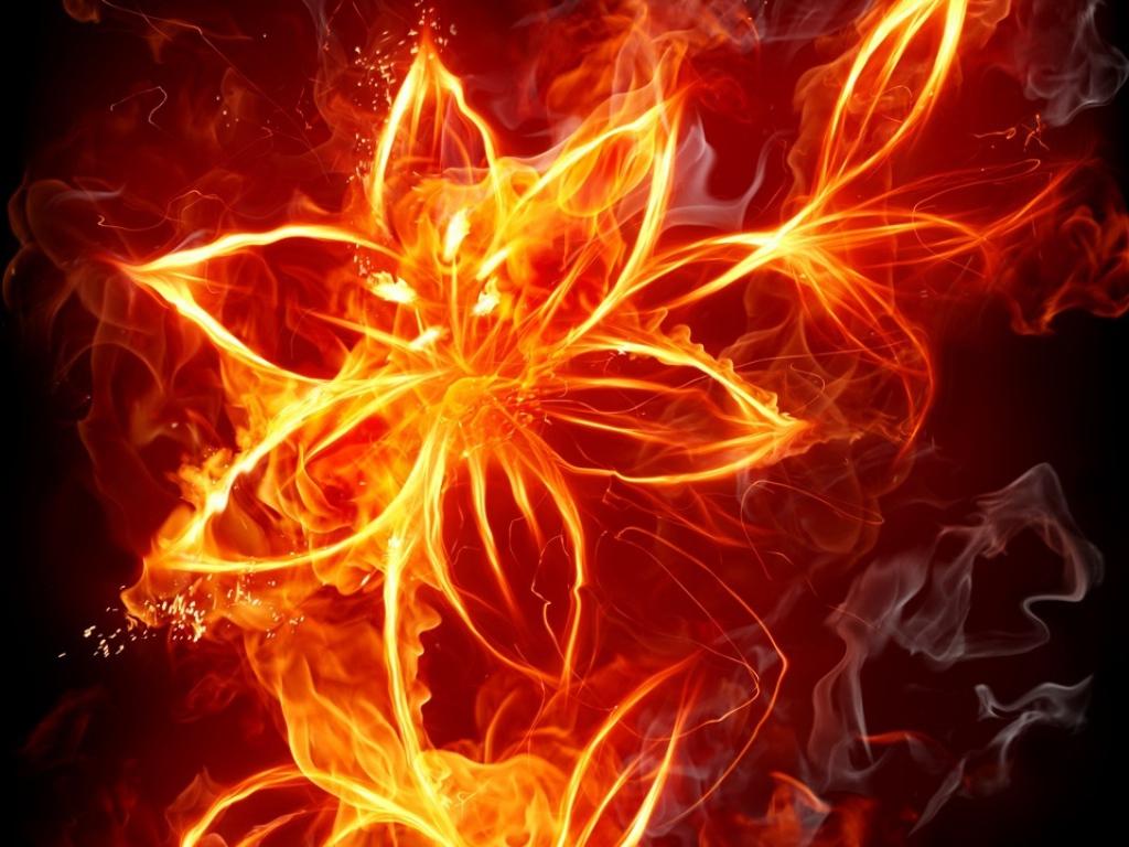 Картинки огненных цветов 8