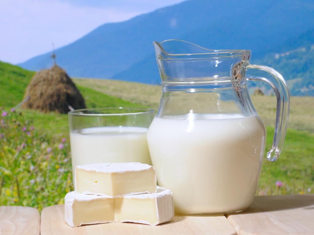 1366x768 молоко, небо, трава, кувшин, природа, сыр, стог, стакан Картинки на рабочий стол #36488