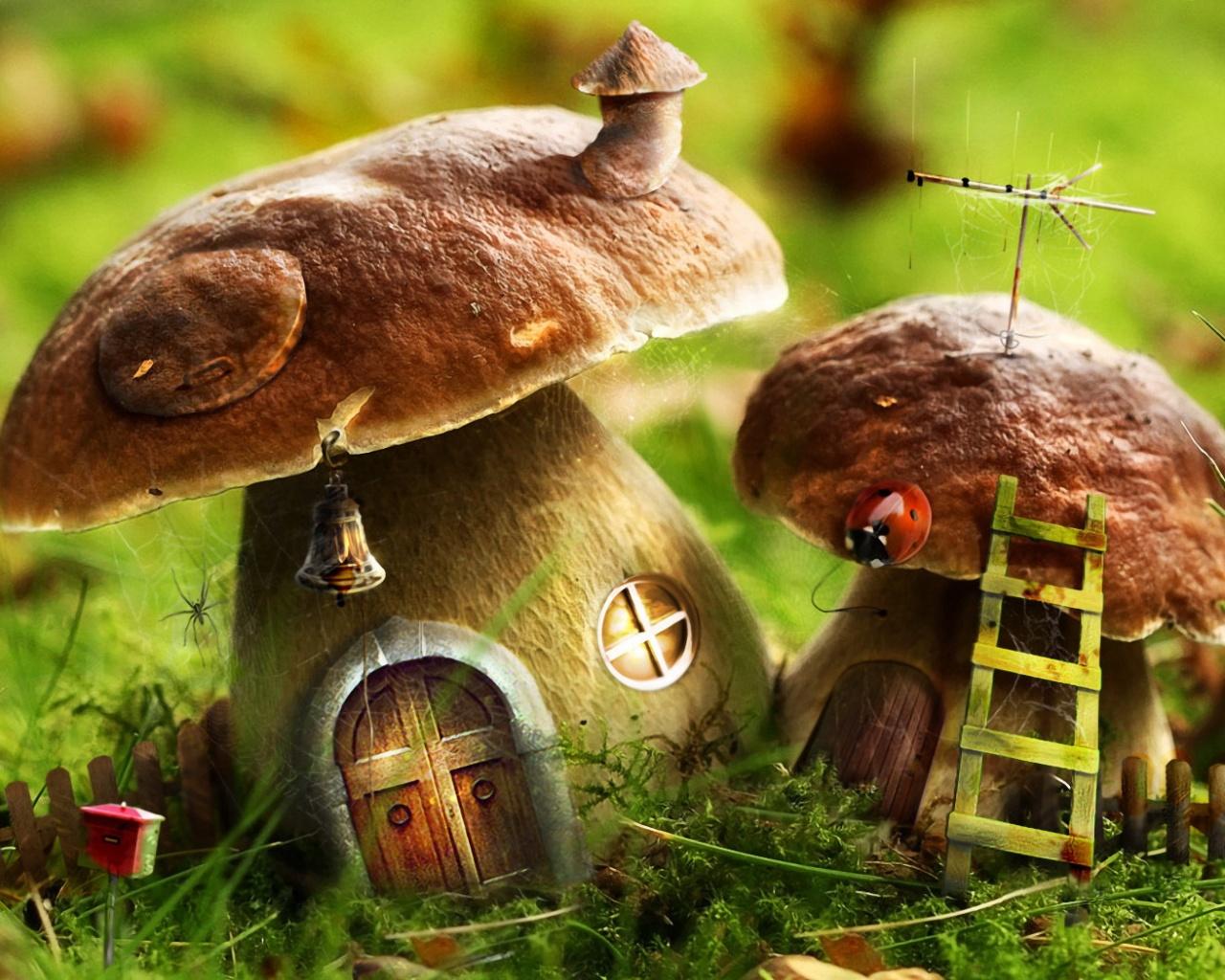 http://www.zastavki.com/pictures/1280x1024/2009/Drawn_wallpapers_Mushroom_houses_016300_.jpg
