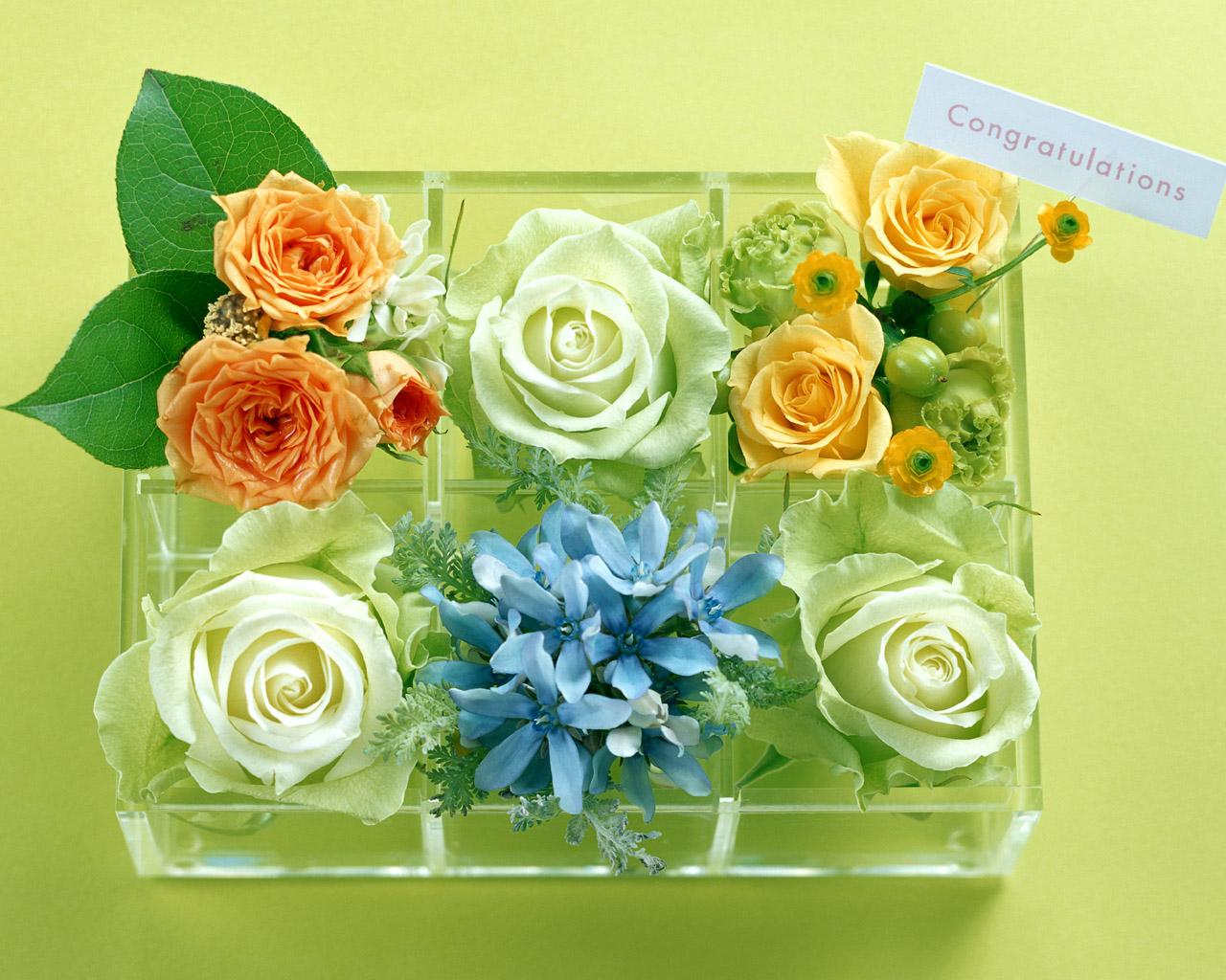 Открытки цветы из контакта