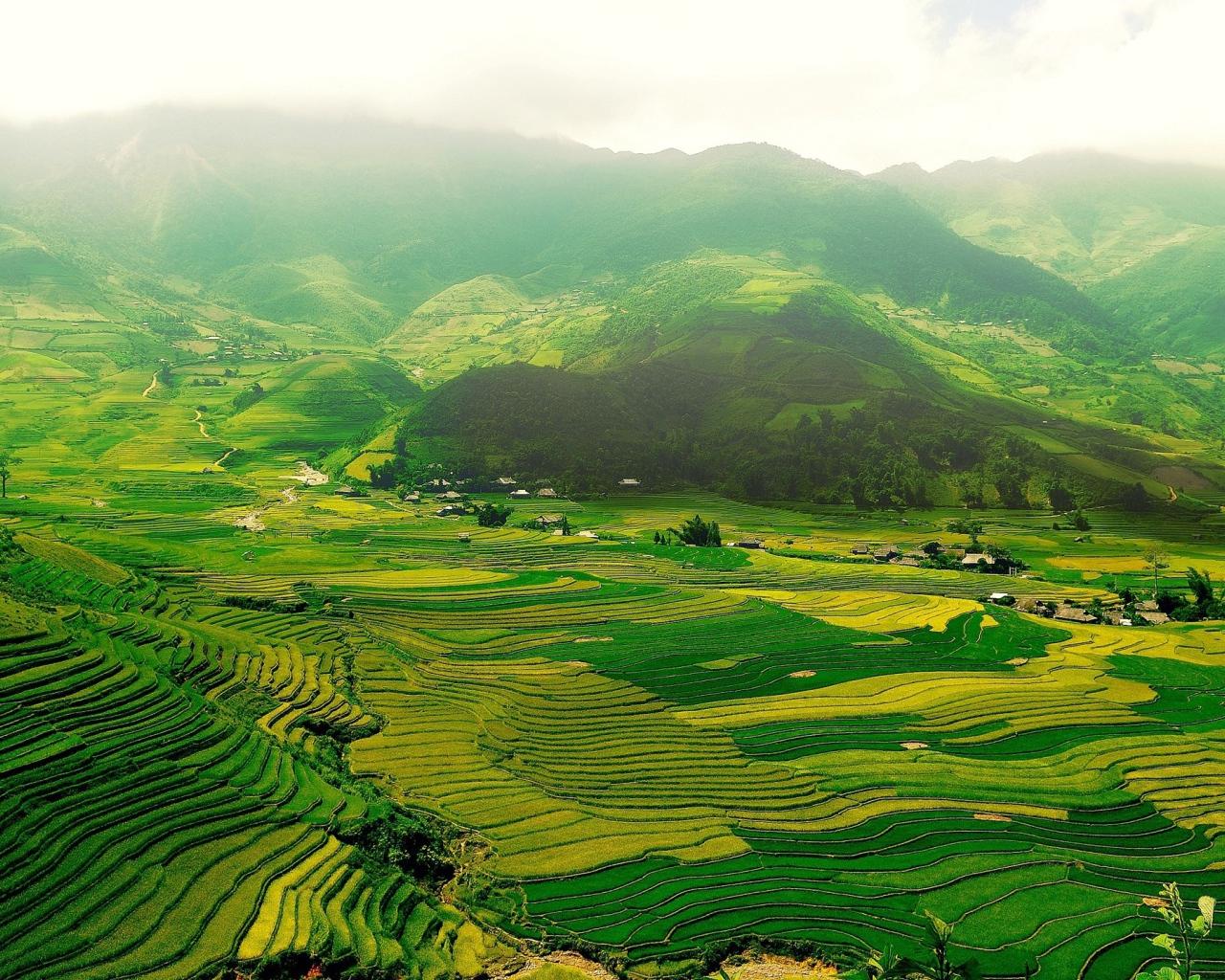 Зеленая долина картинка