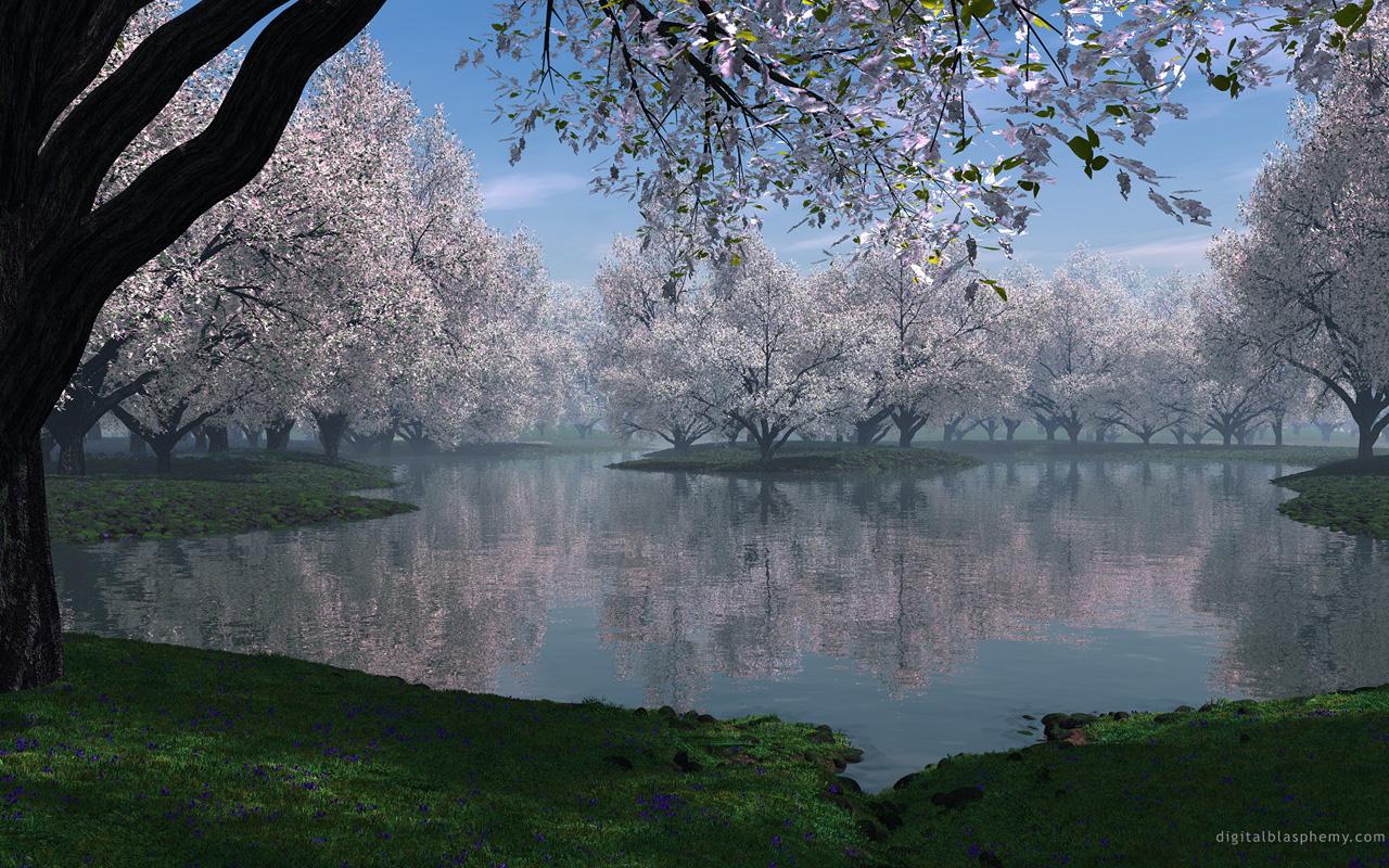 http://www.zastavki.com/pictures/1280x800/2008/Widescreen_Sakura_005184_.jpg
