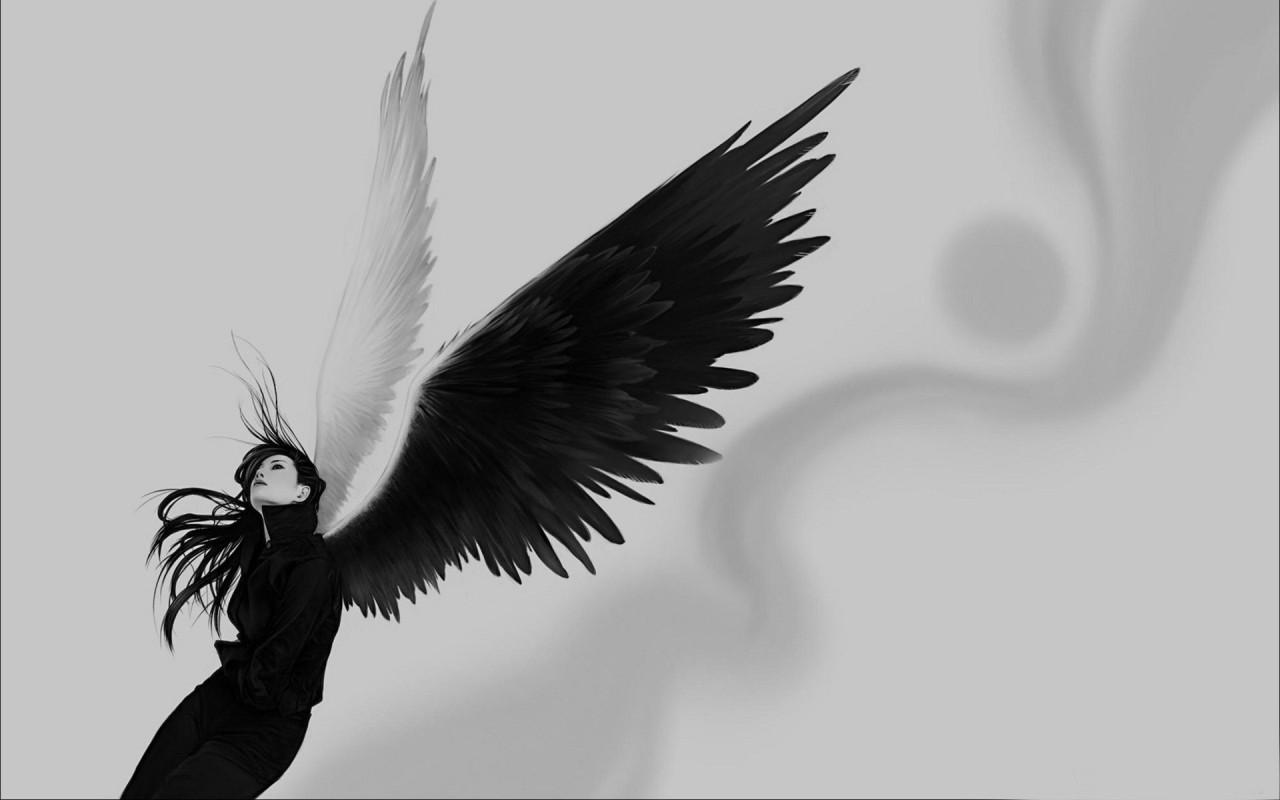 Demon Wings Side View View topic - m α ƨ զ ʋ ɛ я