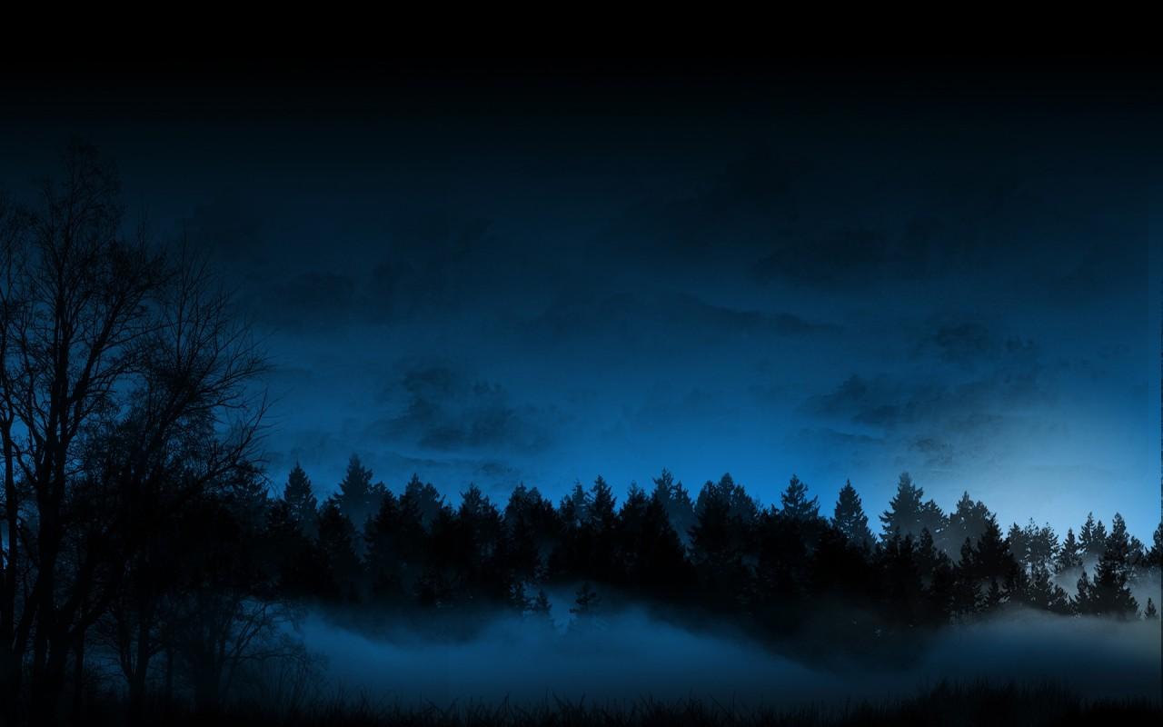 Twilight Forest Wallpa...