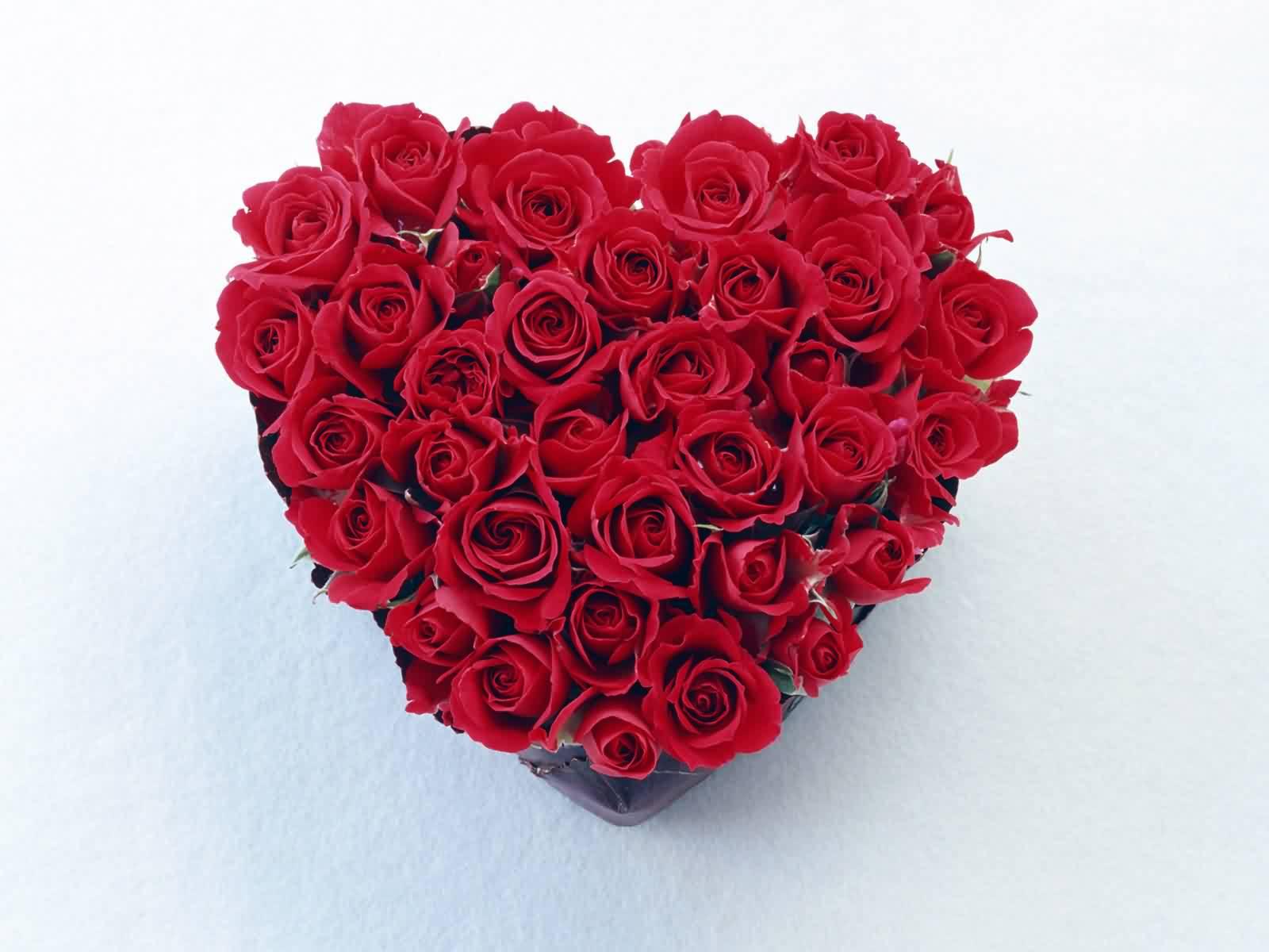 Цветы сердечком фото
