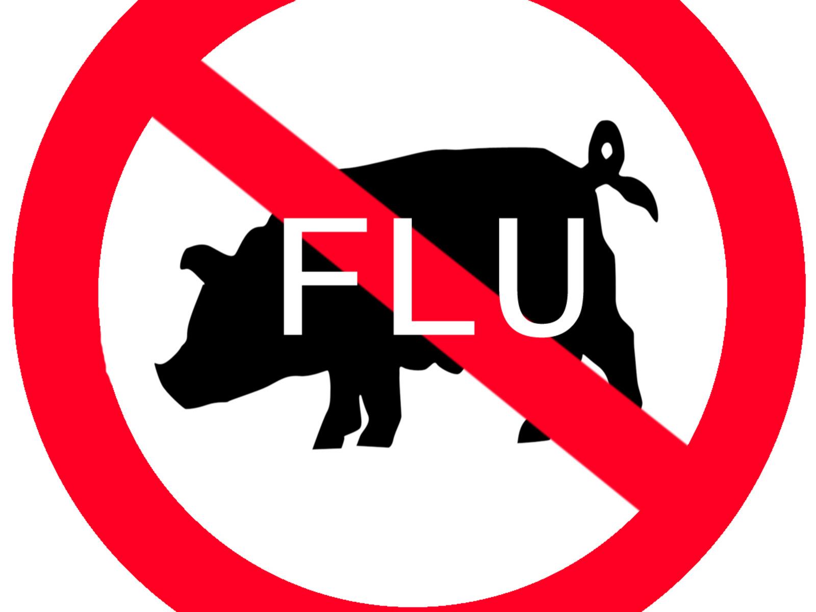 Swine Flue H1N1  H1n1