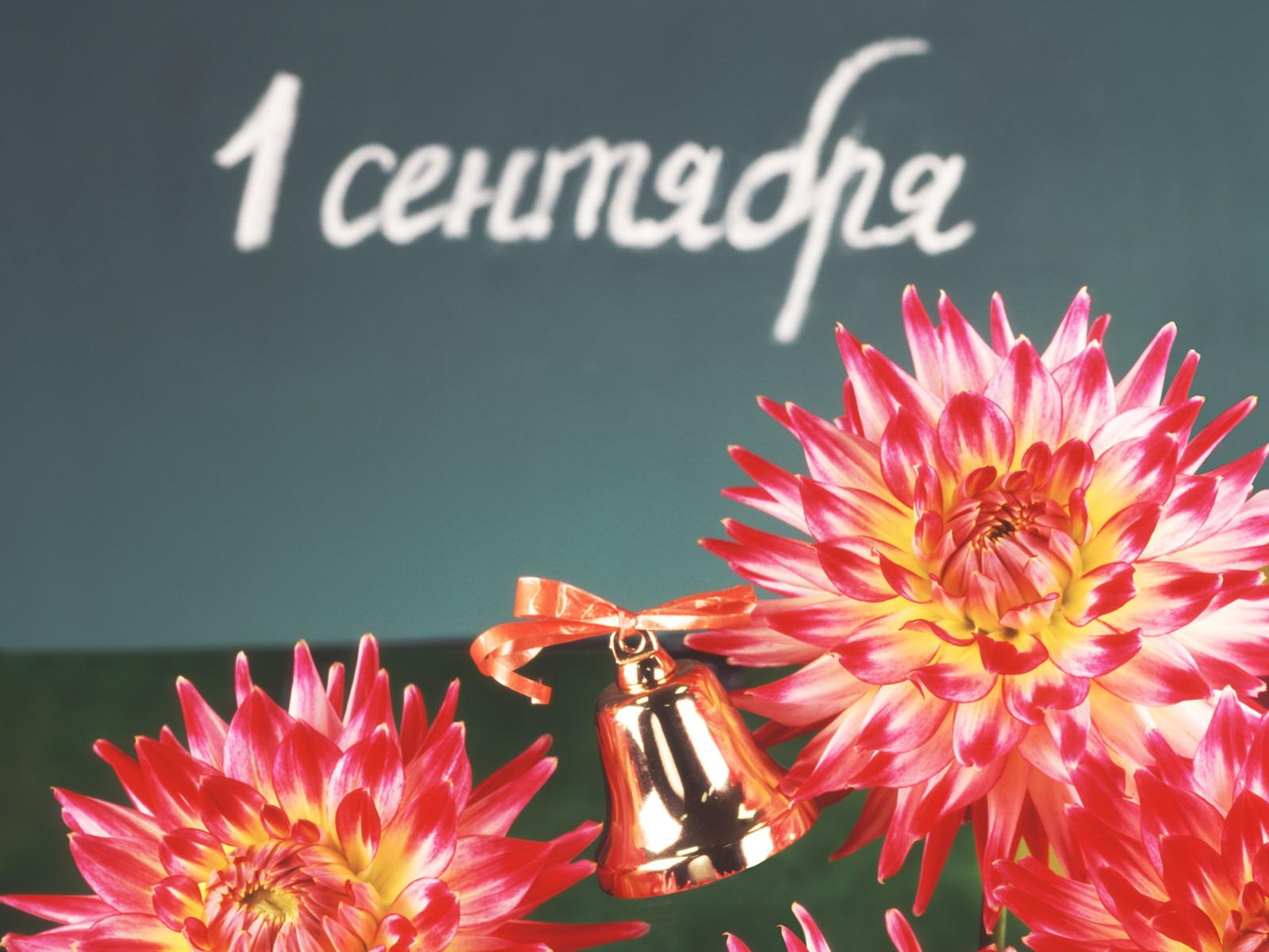 1 сентября день знаний открытки фото, девушки картинки надписями