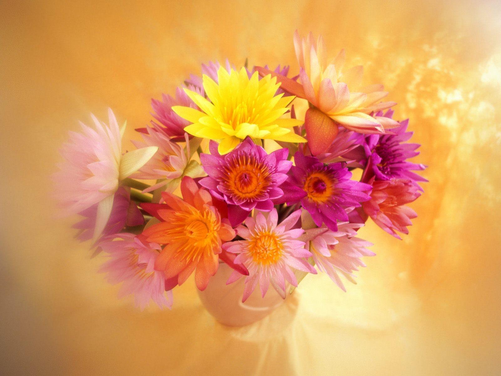 Фотография цветка