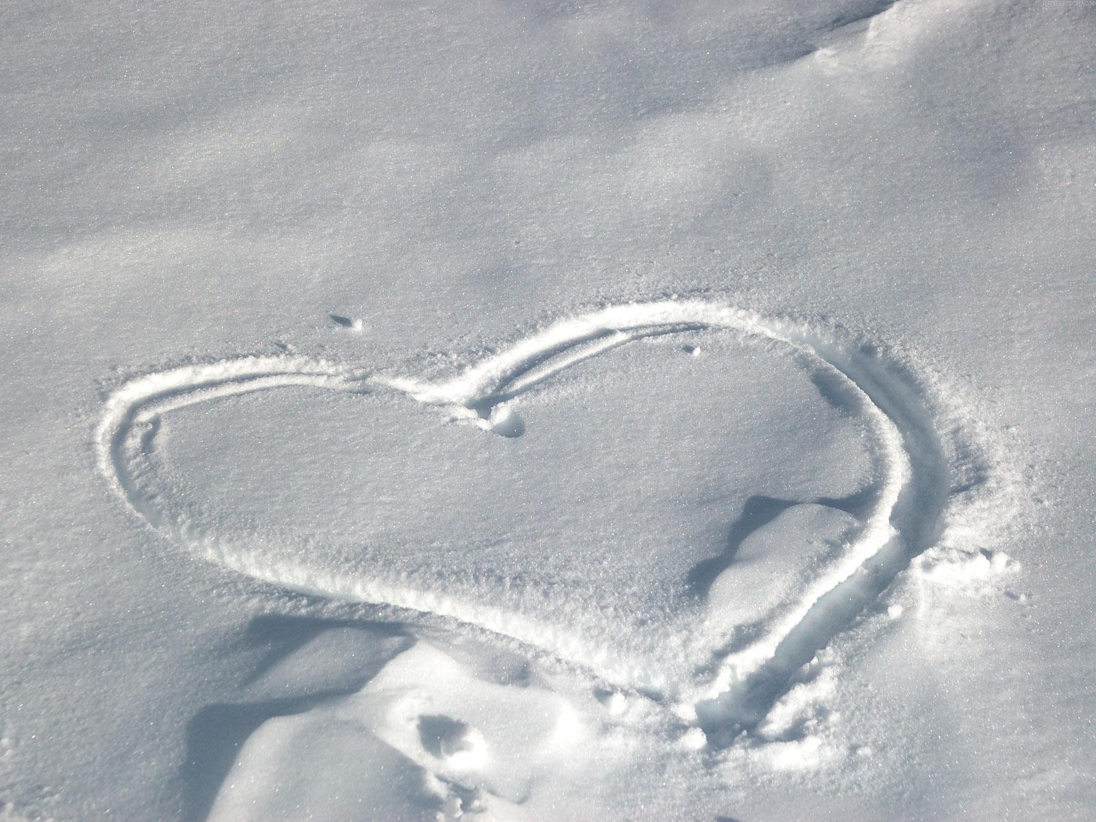можно следы двоих на снегу картинки имел бронирование