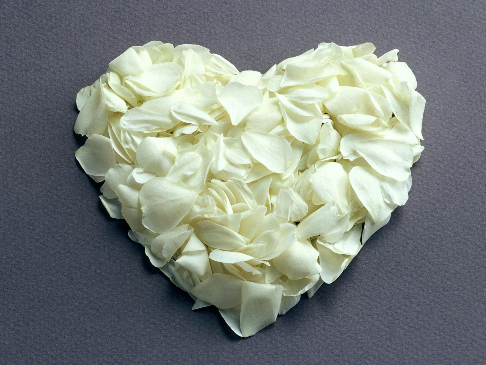Фото букетов цветов в хорошем качестве розы все