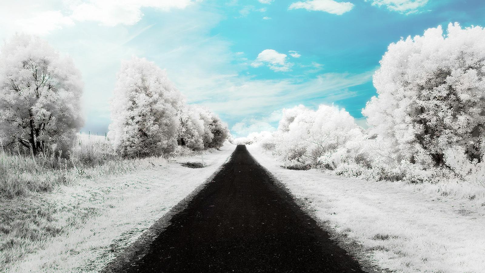 1600x900 hd desktop wallpaper winter - photo #12