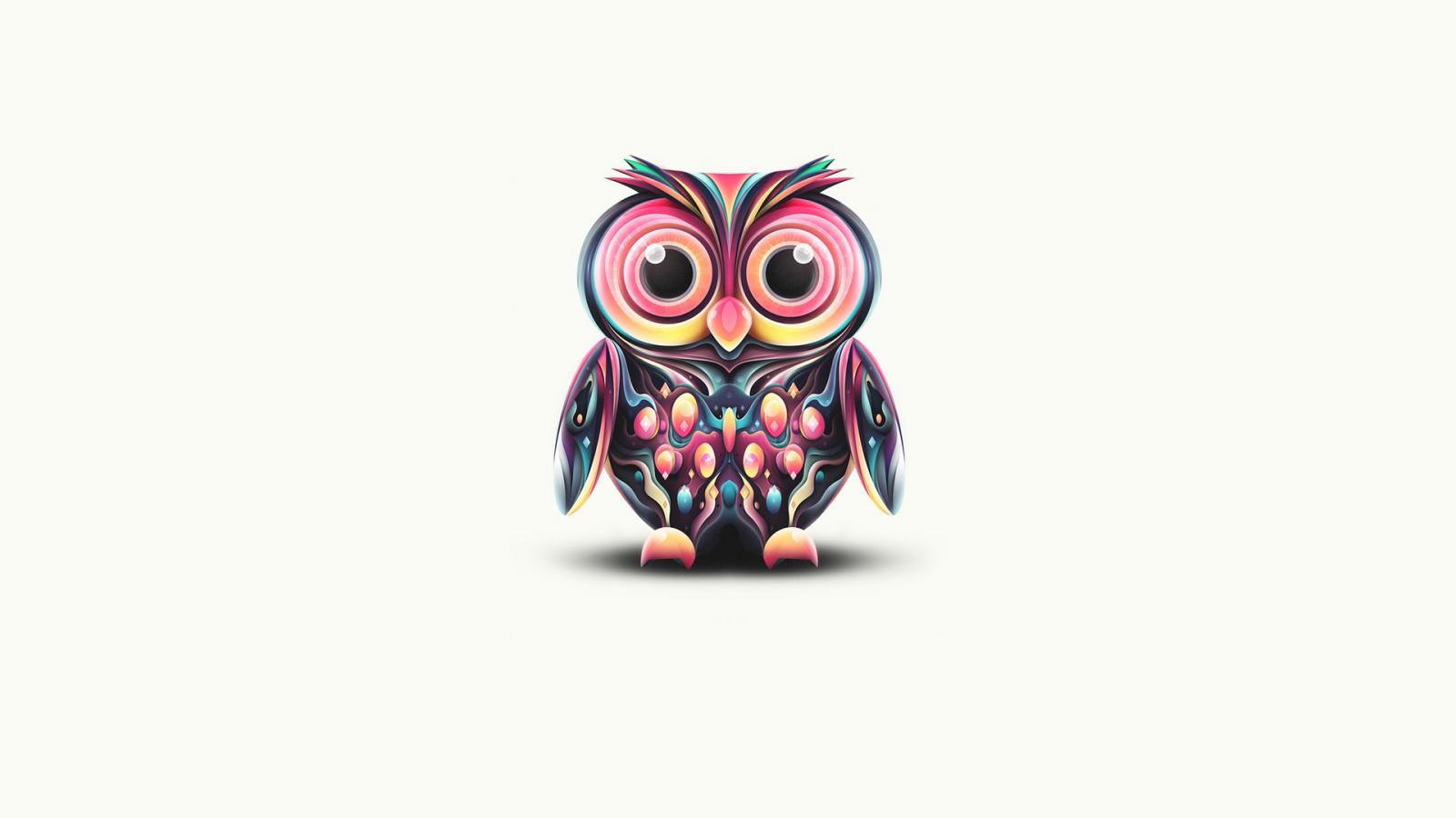 owl desktop wallpaper 1600x900