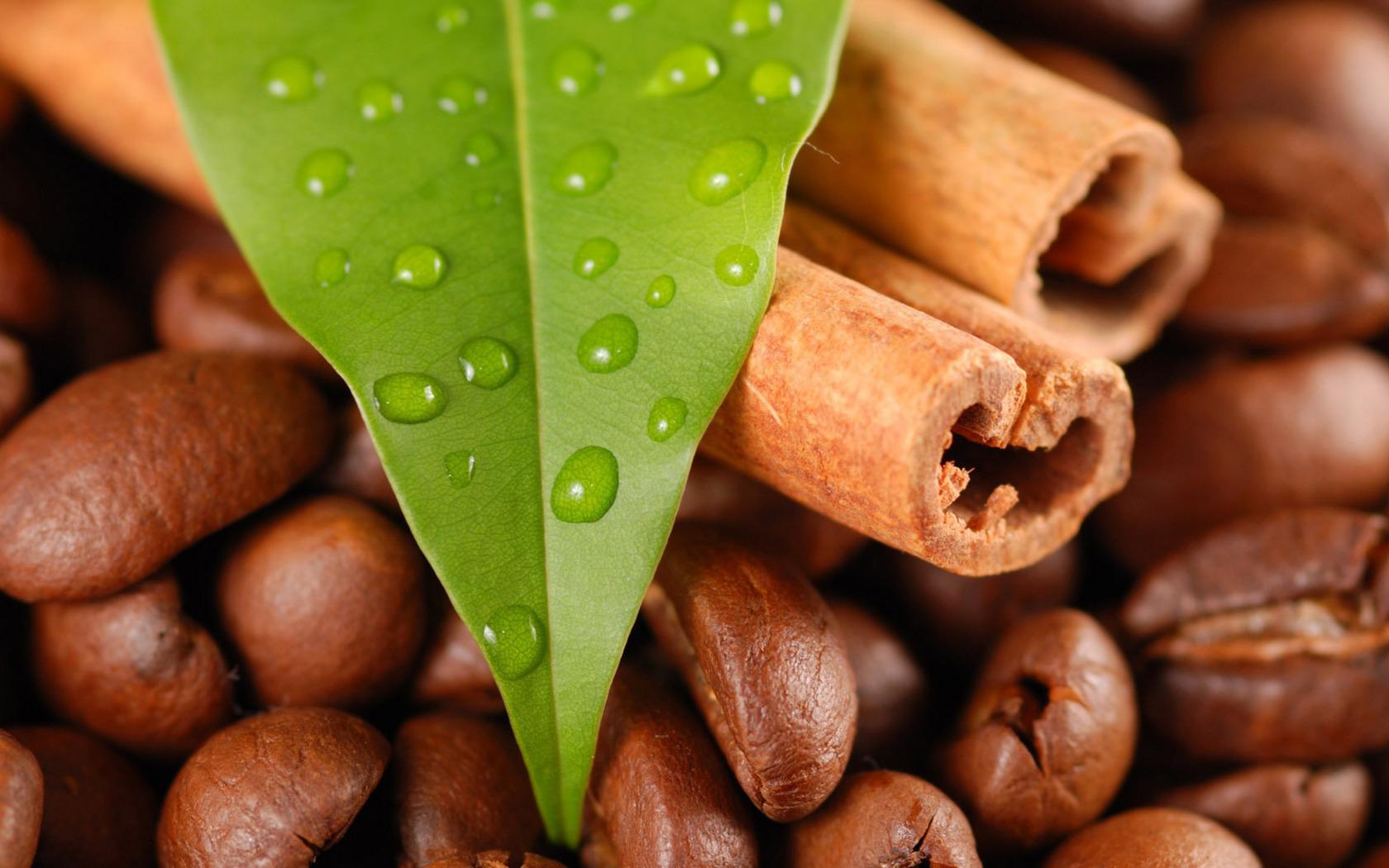 тобой картинка кофе зерна для рабочего стола картинка винкс ваш