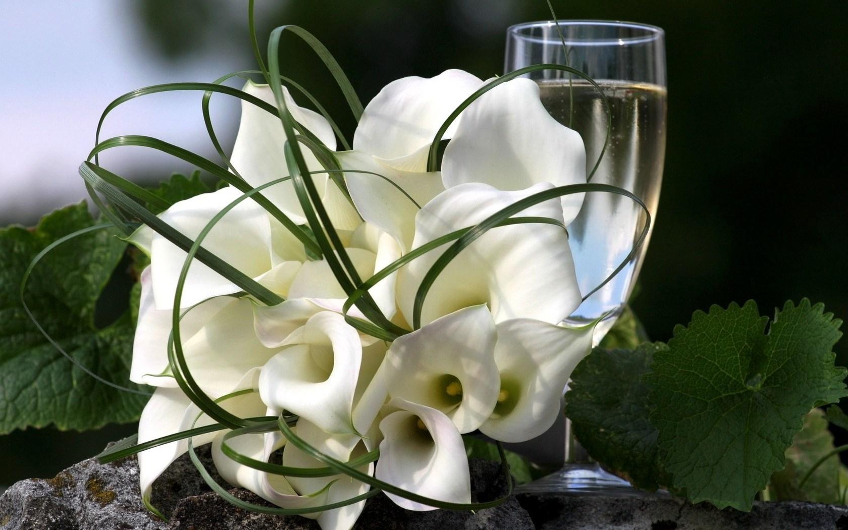 Днем, открытка каллы цветы
