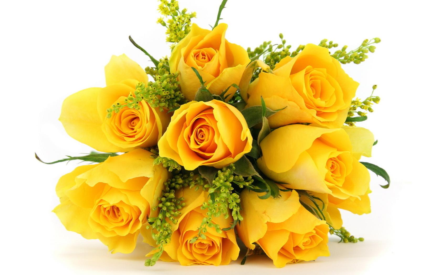 Картинки желтых роз на прозрачном фоне, вайбере
