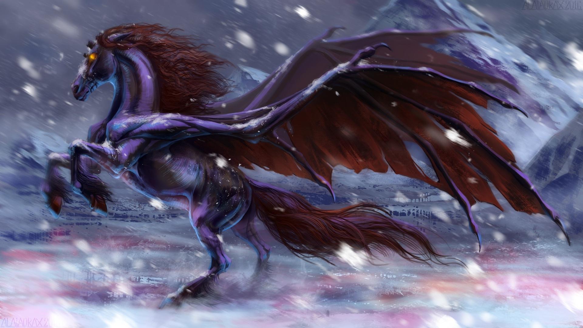 Fantastic Black Horse With Wings Desktop Wallpapers 1920x1080