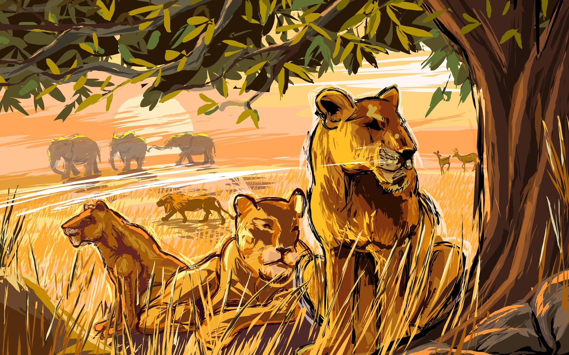 рисунок зверей африки тут начинается работа