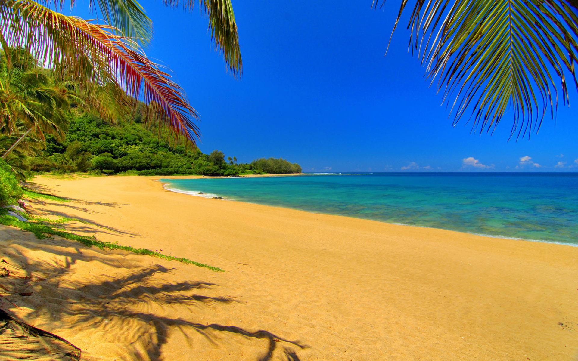 Для рабочего стола фото пляж