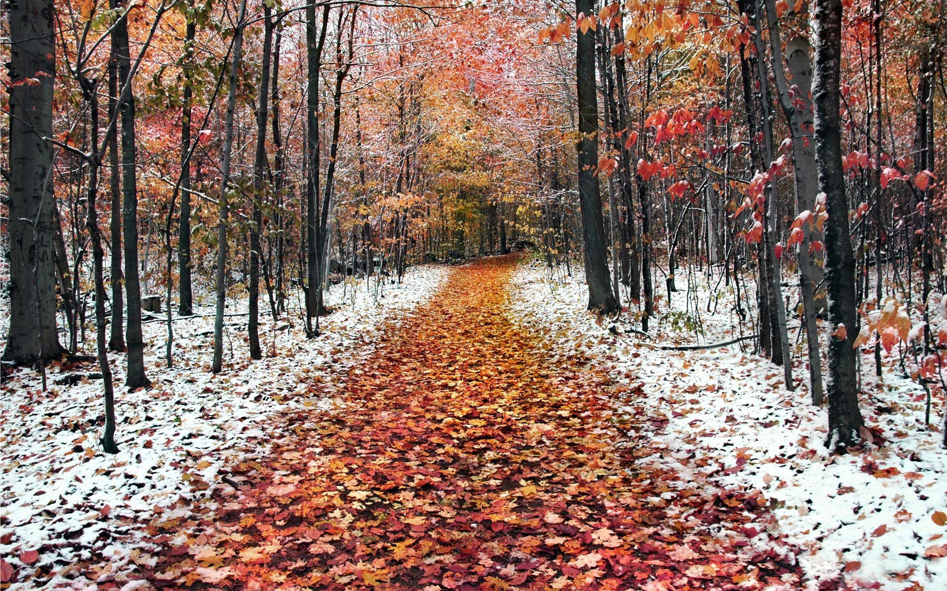 wallpaper landscape winter autumn - photo #31
