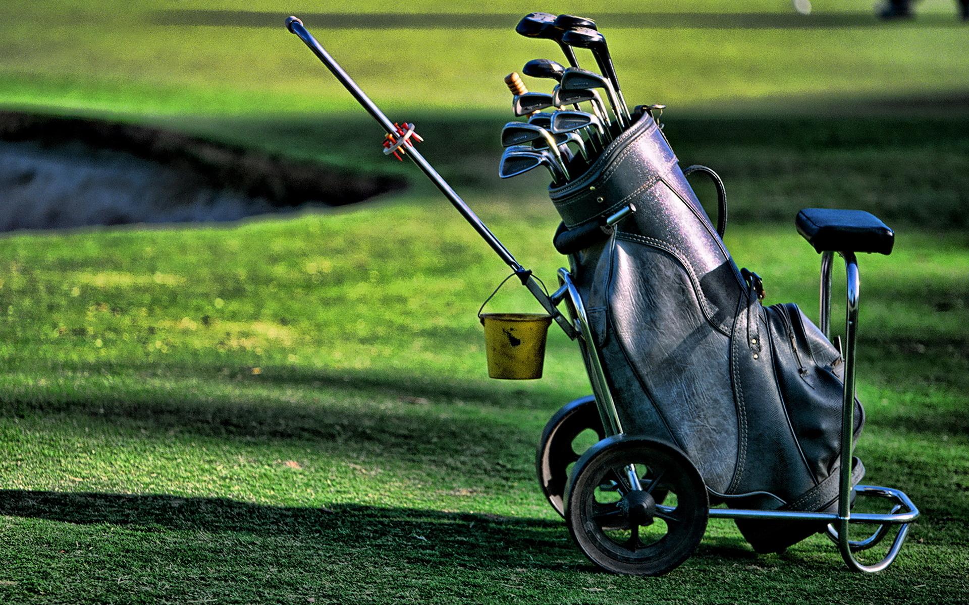 стало картинки клюшек для гольфа этот период стенки