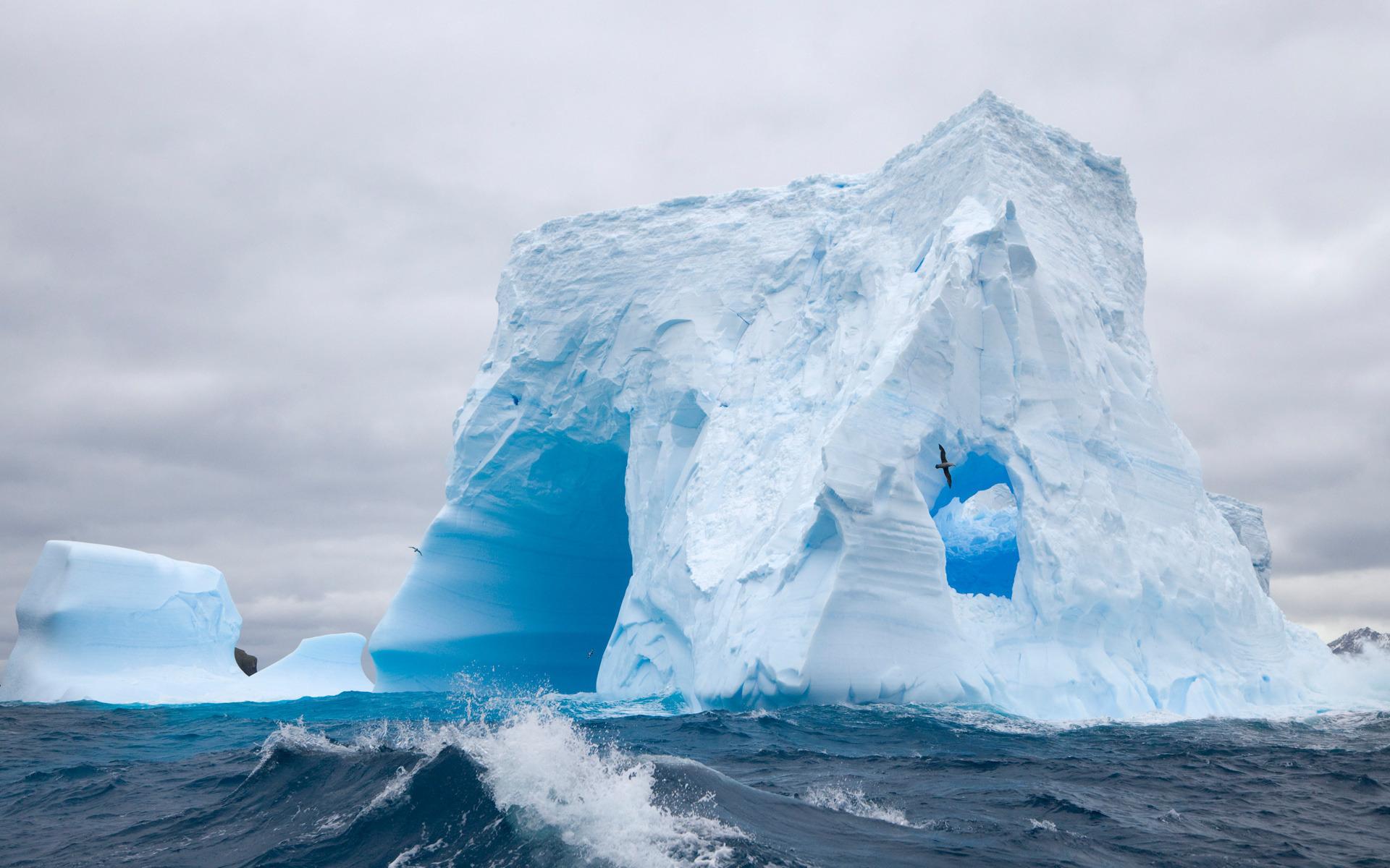 Антарктида картинки для презентации