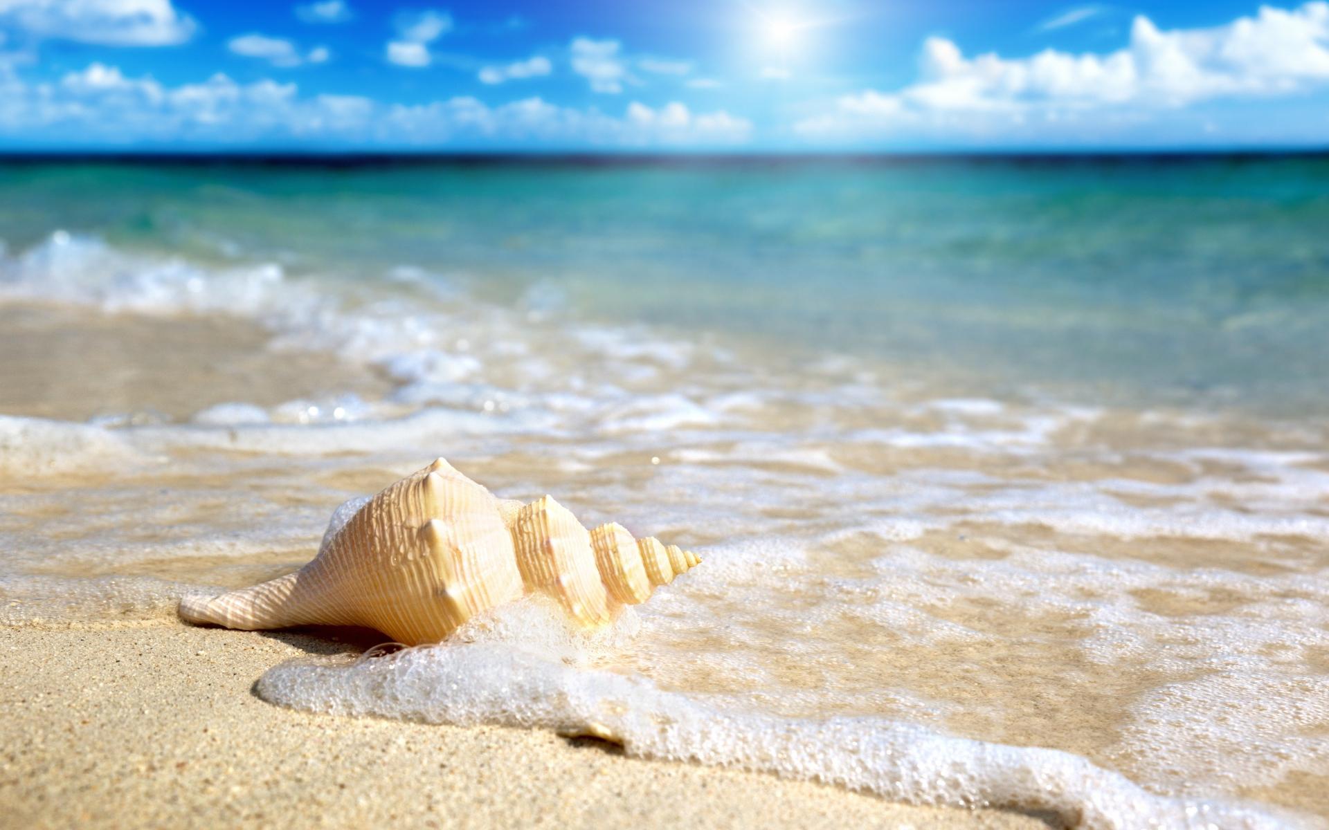 обои для рабочего стола морской песок № 833535 бесплатно