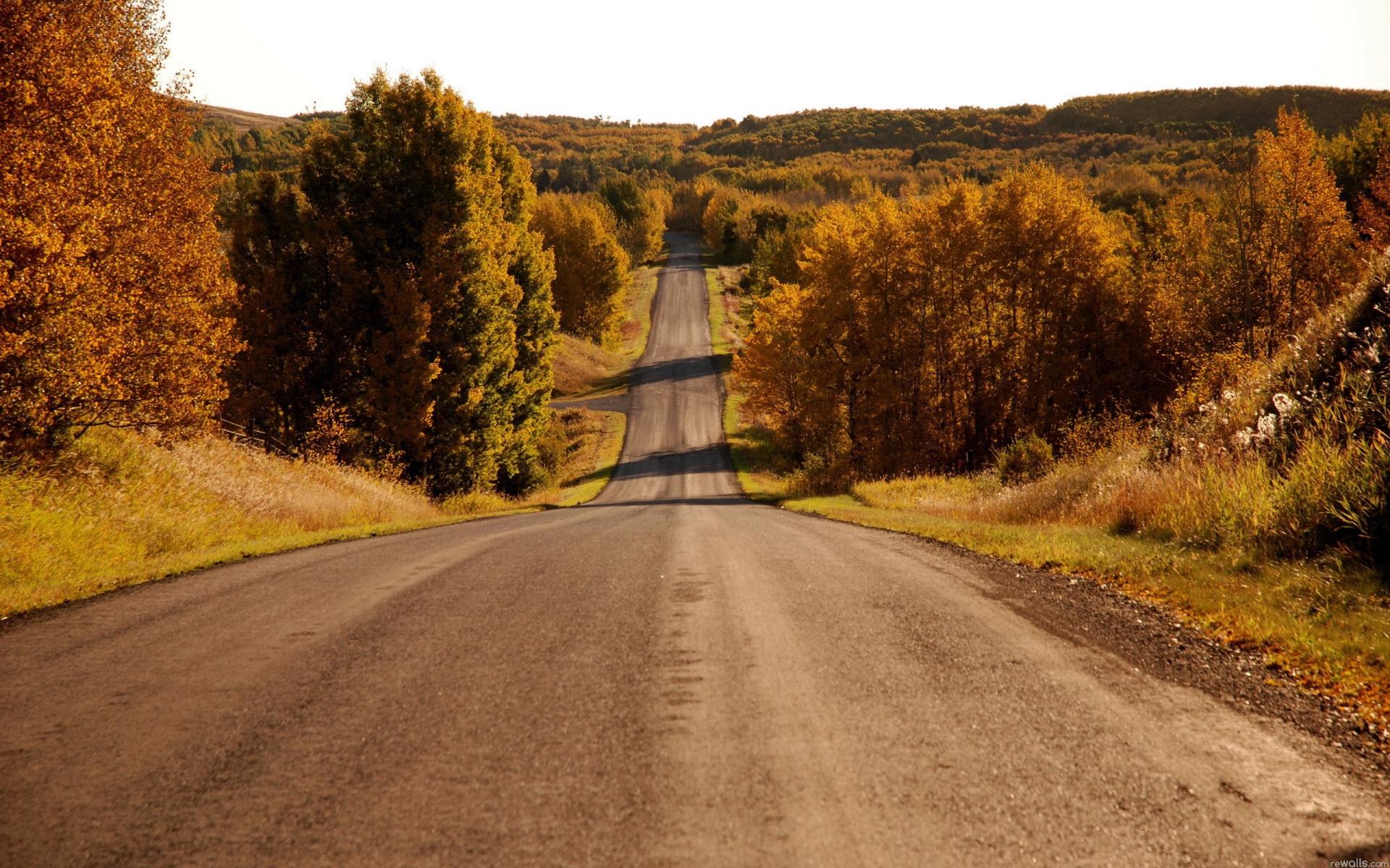 Картинки с пейзажами дорог