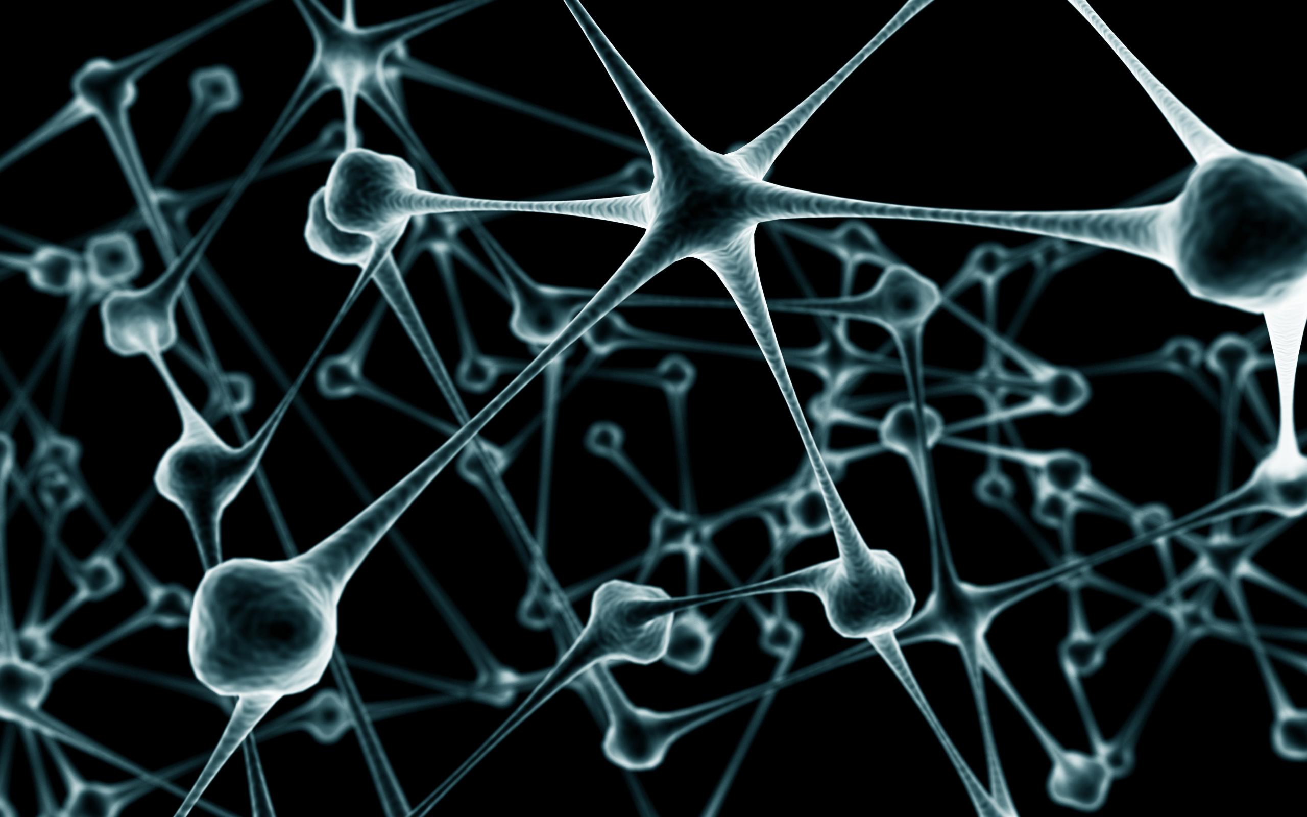 Wikium  тренажер для мозга  развитие памяти мышления и