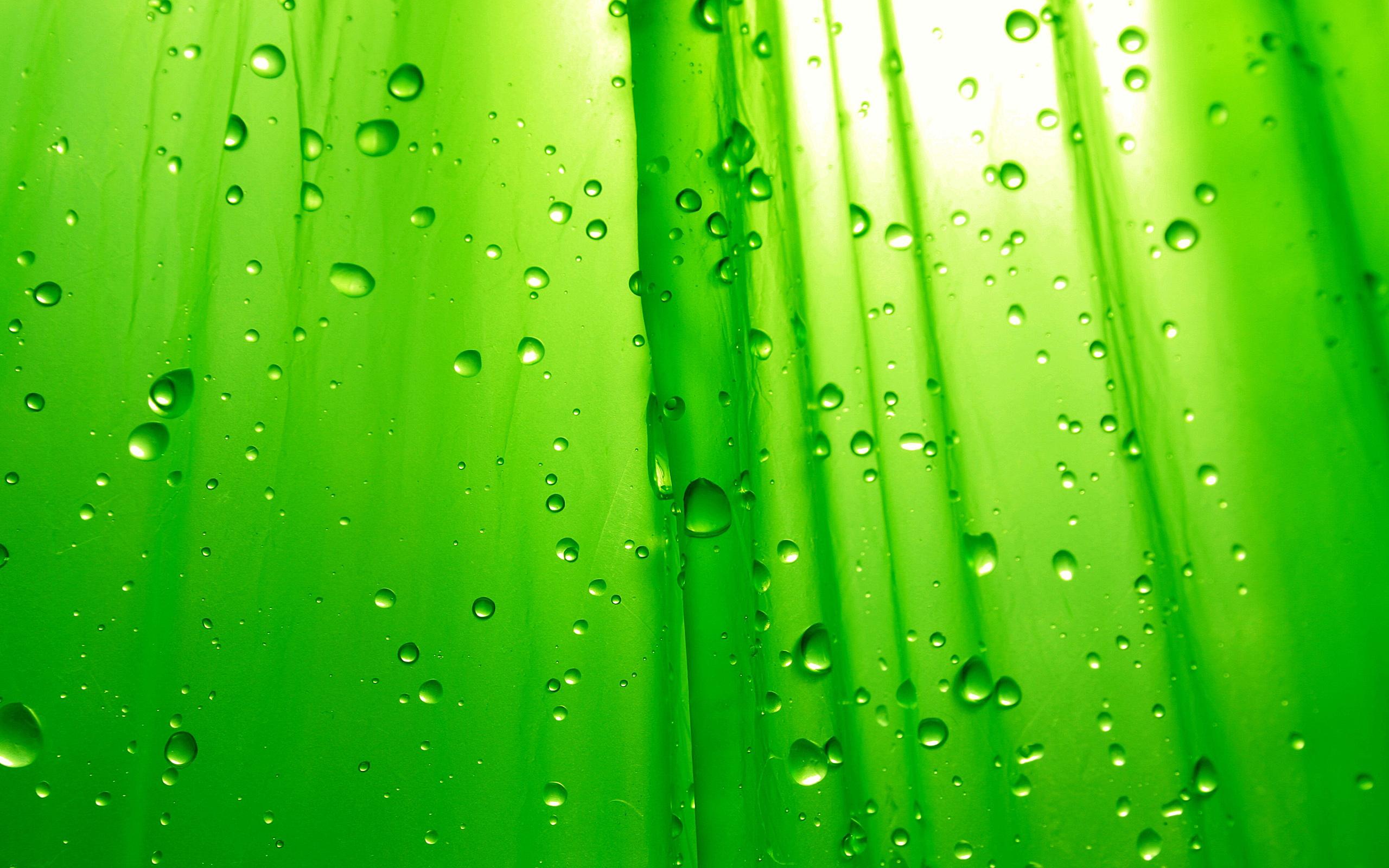 Картинки на рабочий стол зеленые капли