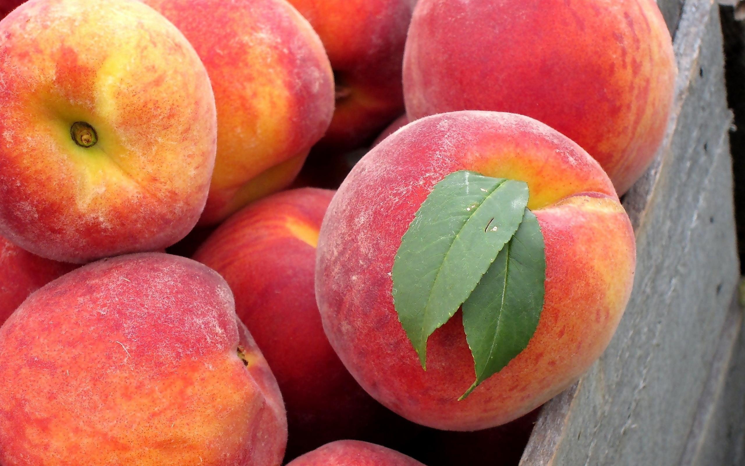 Красивейшие букеты, картинки персики на рабочий стол
