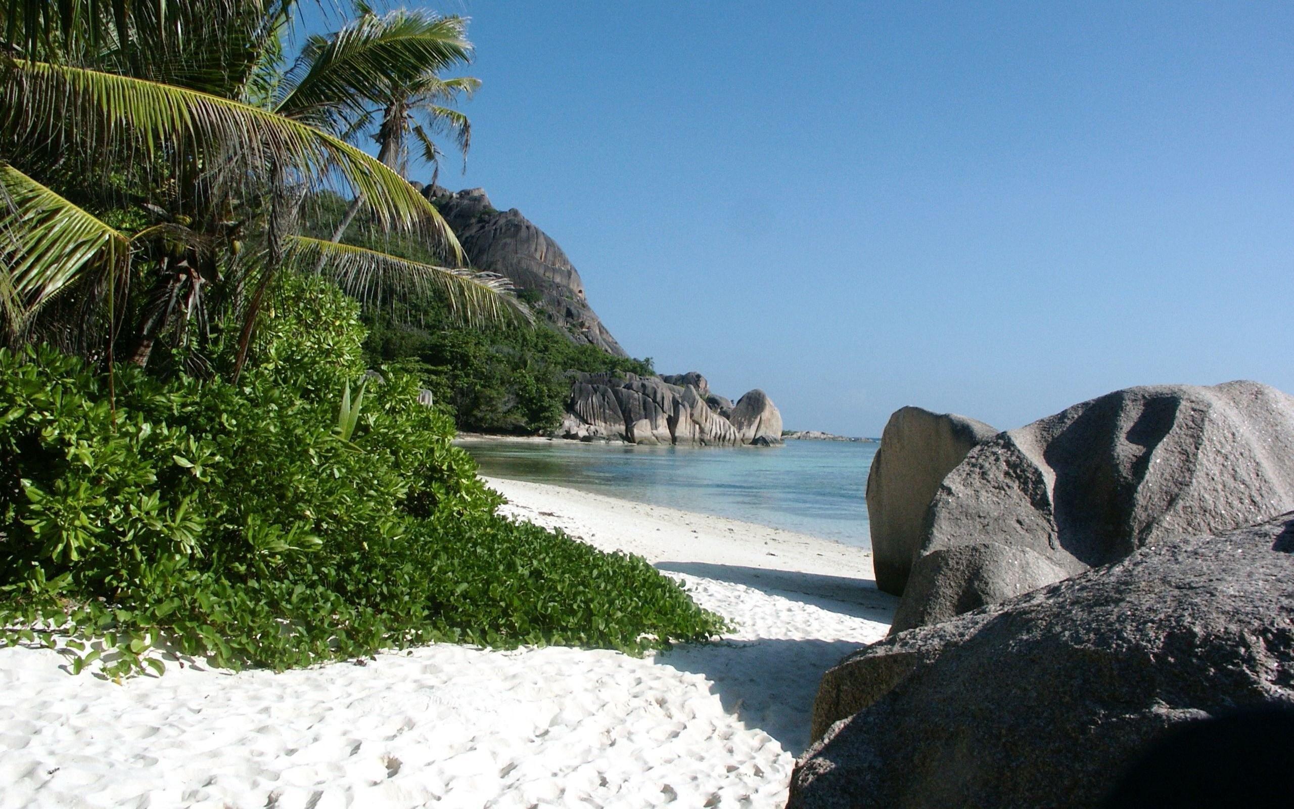того, как фото тропических берегов два десятка