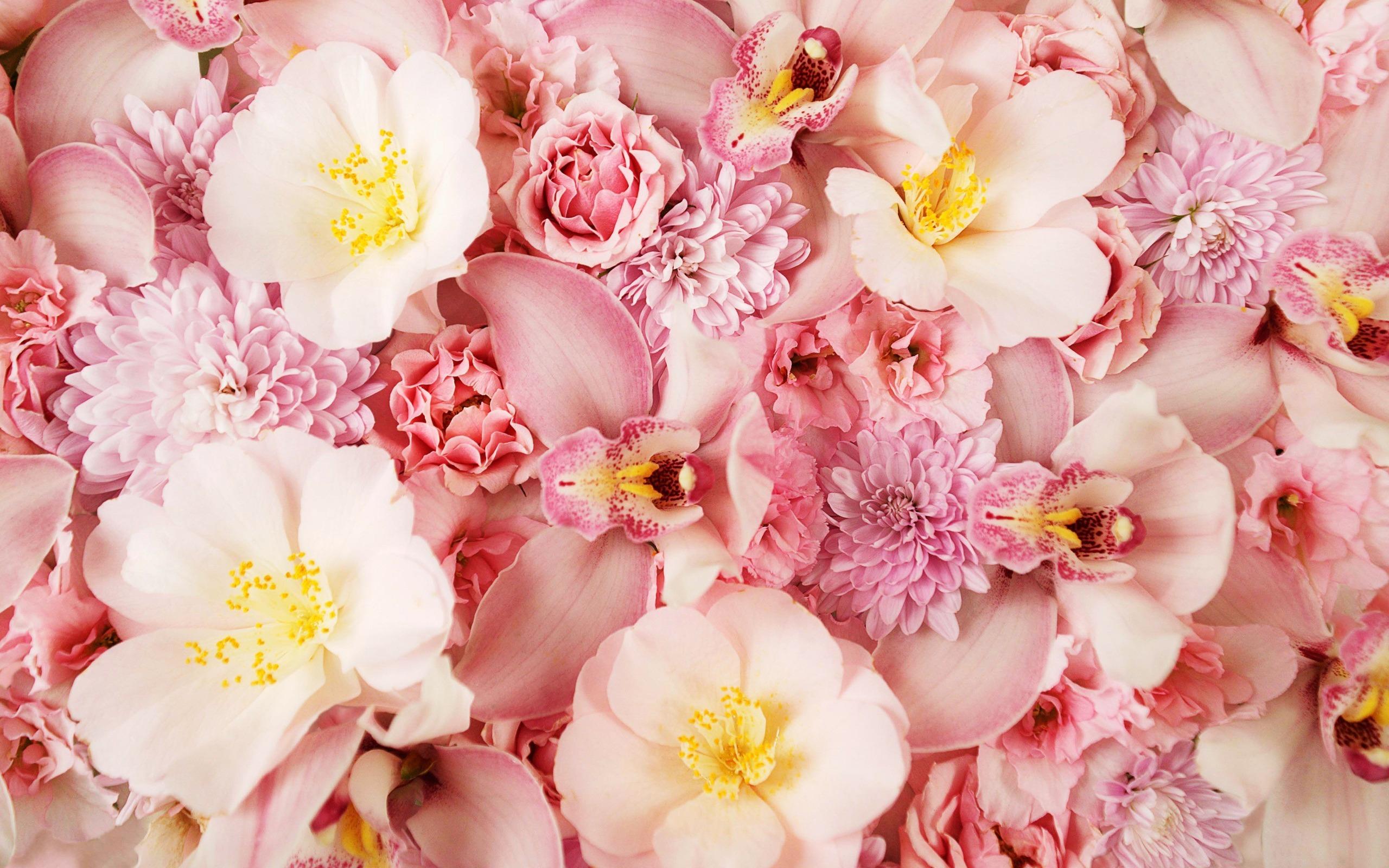 Открытки, картинка фото цветов