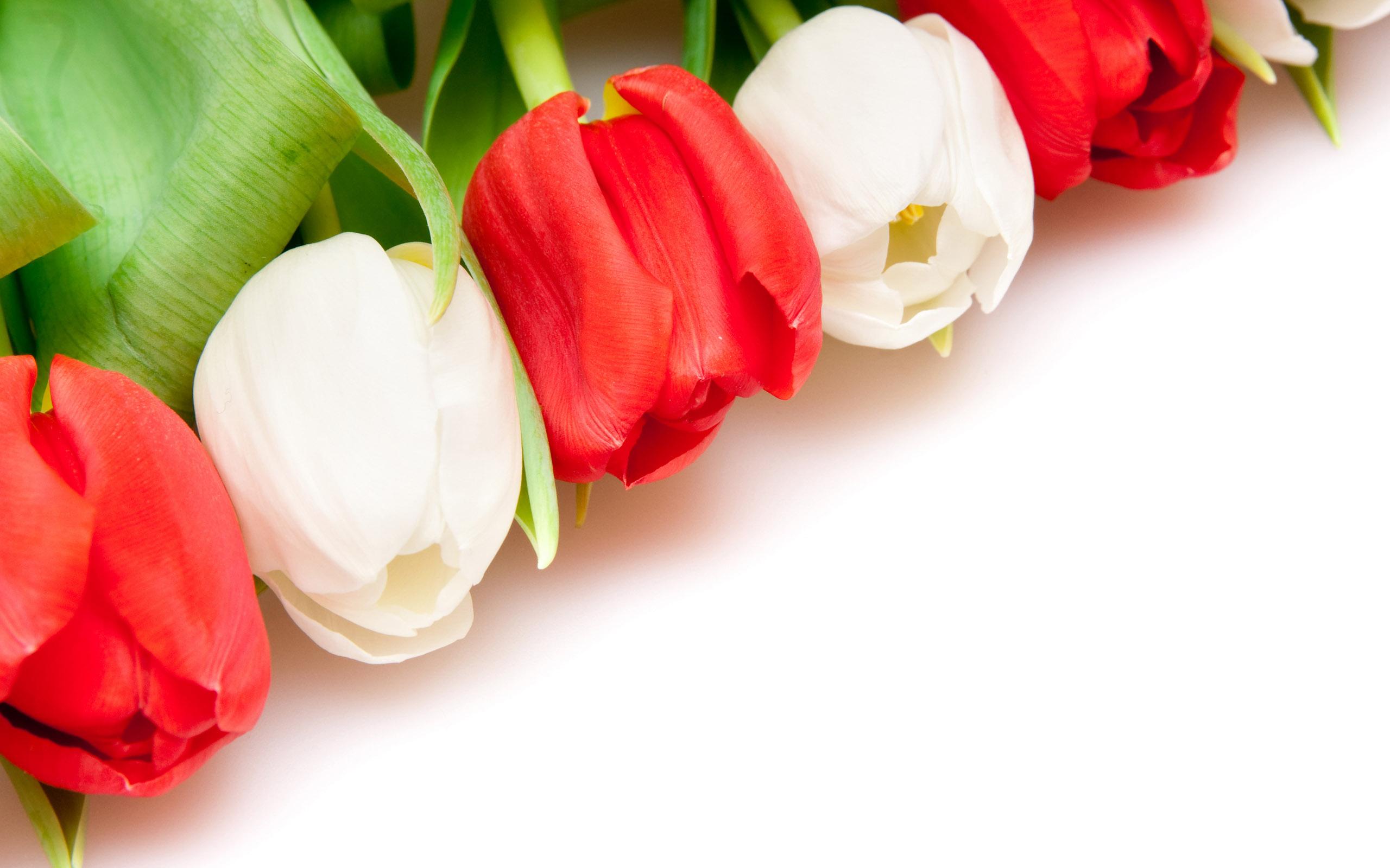 Августа, открытки с цветами на рабочий стол