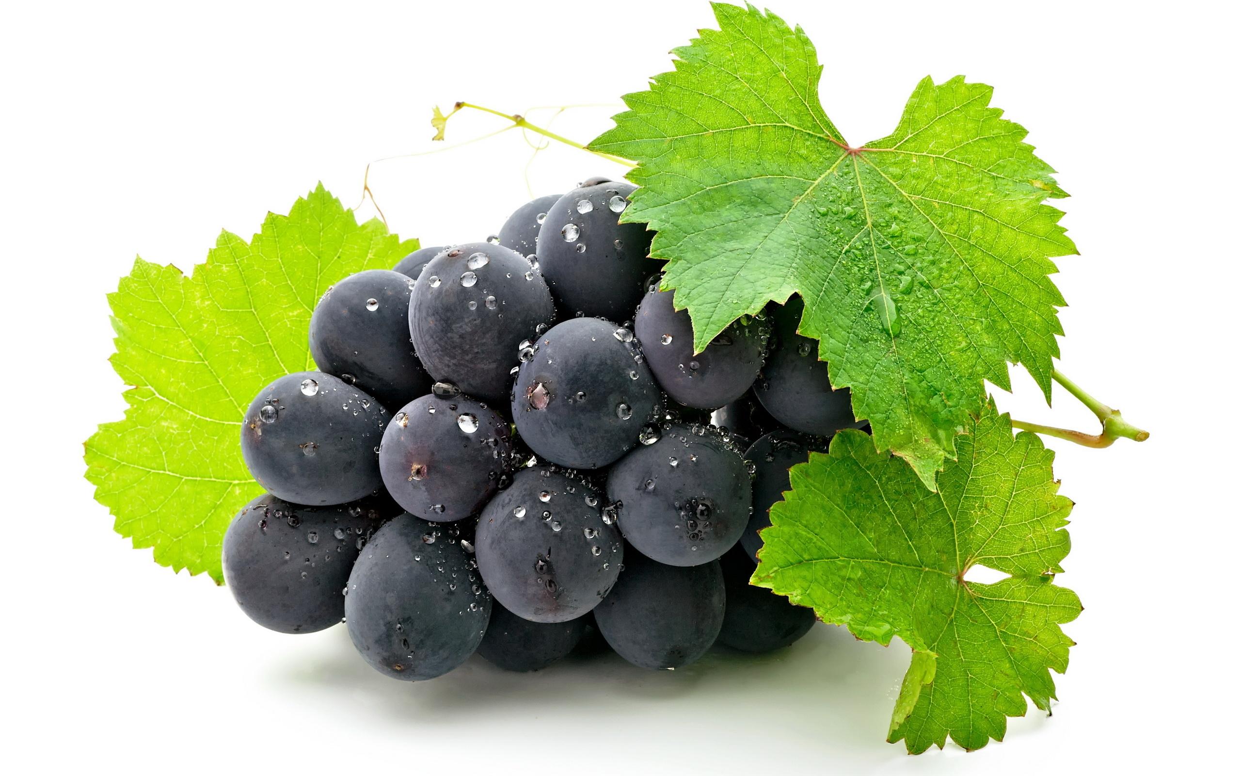 Чем полезен виноград для организма Виноград польза и вред