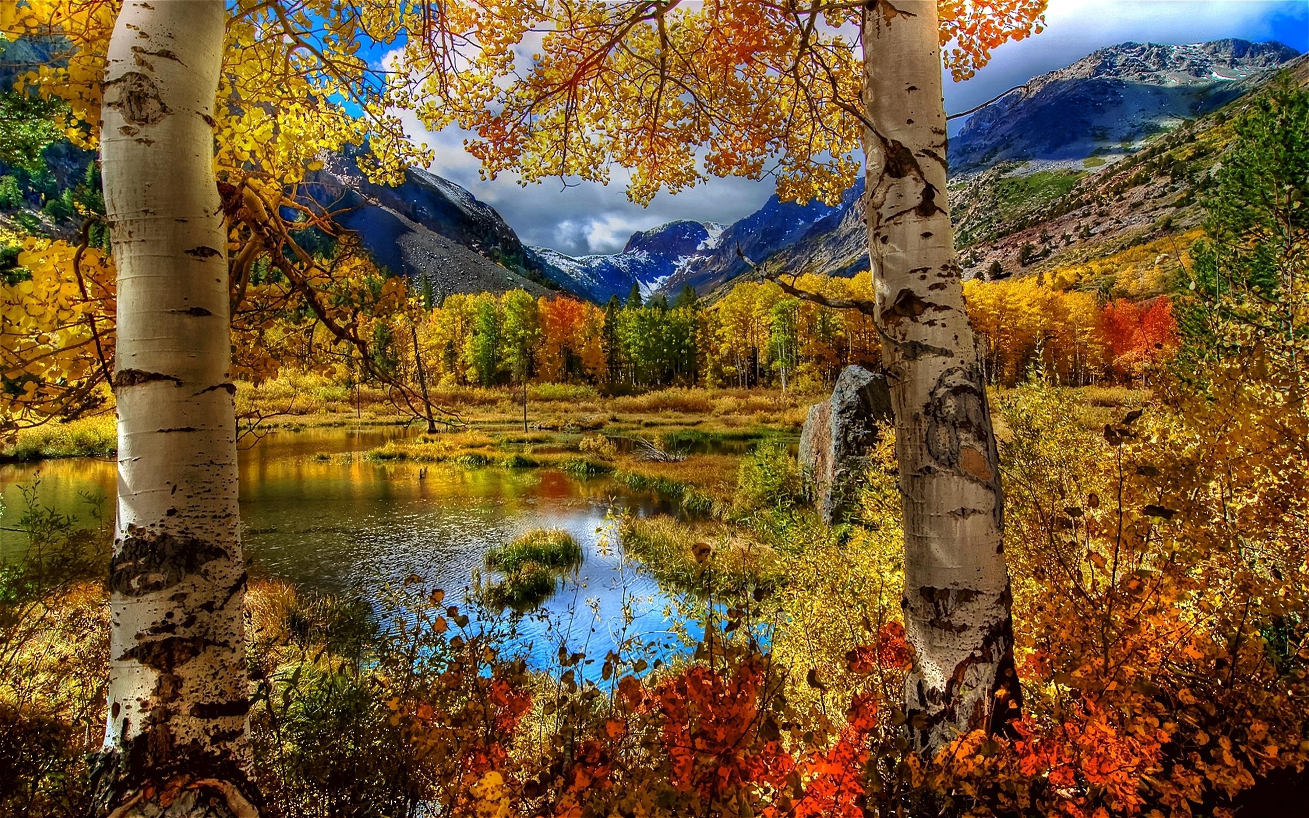 очень красивые картинки про осень она теряла