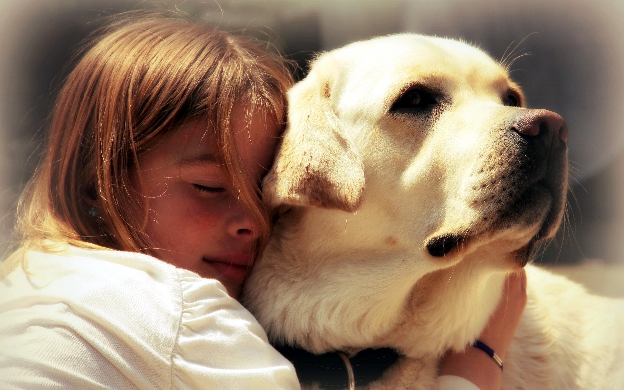 человек и собака фото картинки к-поп