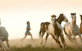 Jog with herd