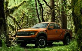 Ford в лесу