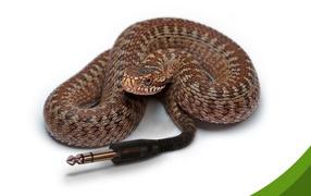 Компьютерная змейка