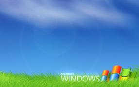 Windows Vista - зеленая травка