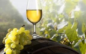 Grape wine glass