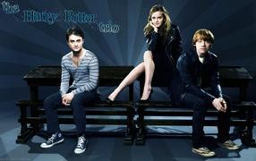 Harry Potter Trio