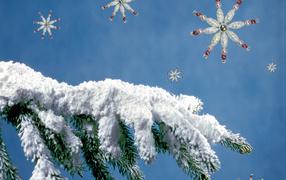 Картинки зима февраль на рабочий стол