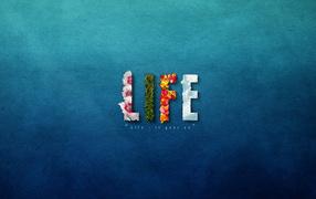 Жизнь