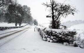Зимняя дорога в село