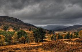 Scotland Cairngorms