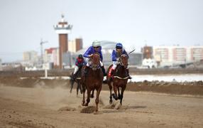 Horses racers