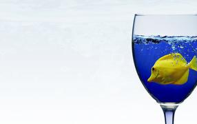 Рыба в бокале