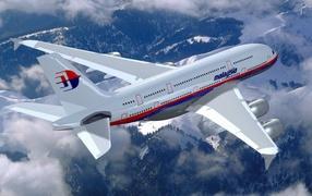 The plane flies in Malaysia